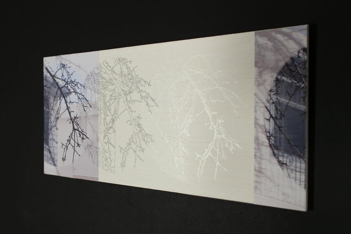 Untitled - Crab Apple Tree & House Time-breeze Reverb Below Zero